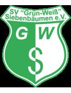 SV Grün-Weiß Siebenbäumen U19