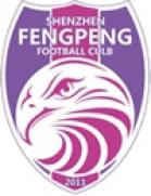 Shenzhen Fengpeng
