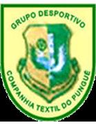 Textil Pungue
