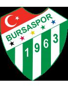 Bursaspor Formation