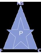 New Star de Douala