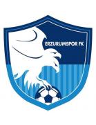 Büyüksehir Belediye Erzurumspor II