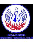 FAS Naousa