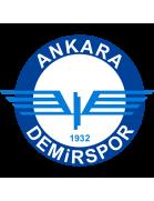 Ankara Demirspor Youth