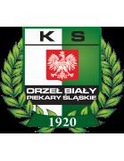 Orzel Bialy Brzeziny Slaskie