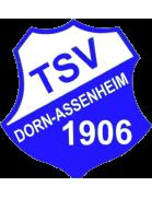TSV 1906 Dorn-Assenheim Altyapı
