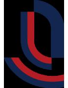 Chongqing Lifan Elite
