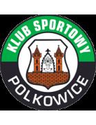 Gornik Polkowice