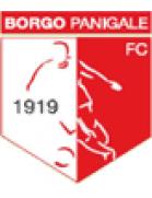 Borgo Panigale FC