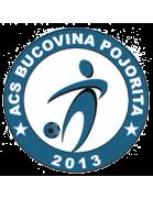 ACS Bucovina Pojorata
