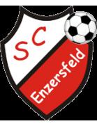SC Enzersfeld/W. Jgd