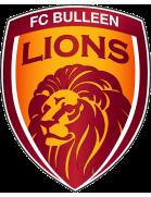 FC Bulleen Lions U19