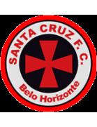 Santa Cruz Futebol Clube (MG)