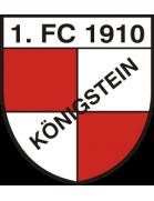 1.FC Königstein Jugend