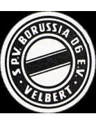 Borussia Velbert Jugend