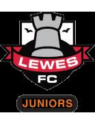 Lewes FC Juniors