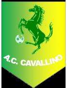 ASD Cavallino