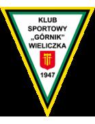 Gornik Wieliczka