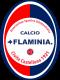 Calcio Flaminia
