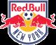 New York Red Bulls Academy