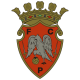 Futebol Clube Penafiel