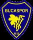 Ci Group Buca