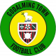 FC Godalming Town