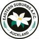 Eastern Suburbs AFC Youth