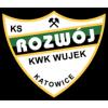 Rozwój Katowice