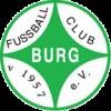 1.FC Burg