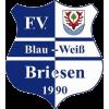 FV Blau-Weiß 90 Briesen