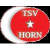 Türkischer SV Horn