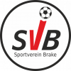 SV Brake