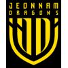 Jeonnam Dragons FC