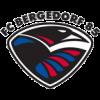 FC Bergedorf 85