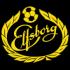IF Elfsborg UEFA U19