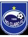 Rio Claro Futebol Clube (SP)