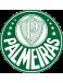 SE Palmeiras São Paulo U20