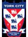 York City U19