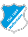 TSG 1899 Hoffenheim Giovanili