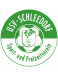 USV Schleedorf