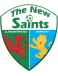 The New Saints FC U19