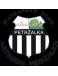 FC Artmedia Petrzalka