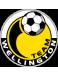 Team Wellington Youth