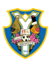 Yongin City FC