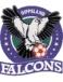 Gippsland Falcons SC