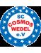 SC Cosmos Wedel