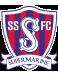 Swindon Supermarine FC