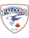 Mississauga Falcons SC