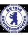SV 1919 Bruchenbrücken Jugend